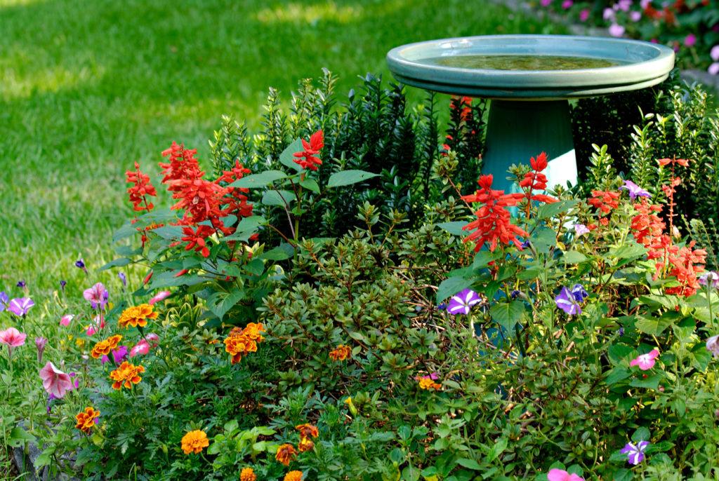 bird bath and flower garden in yard