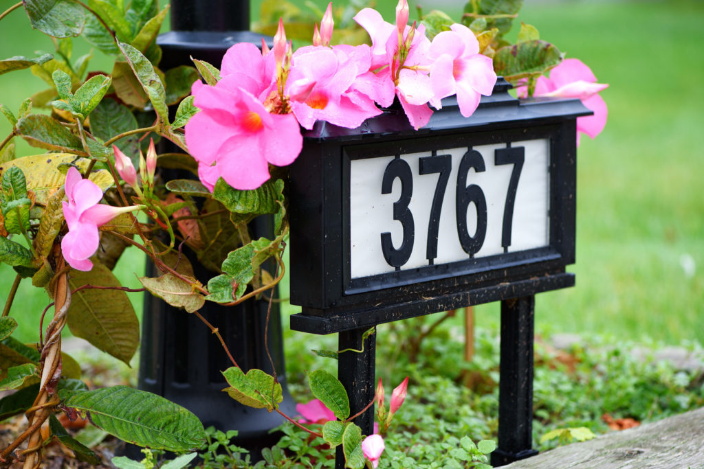 A house number on the front yard with flowers in neighborhood/closeup